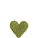 Heart Moss, 25cm, nature-green